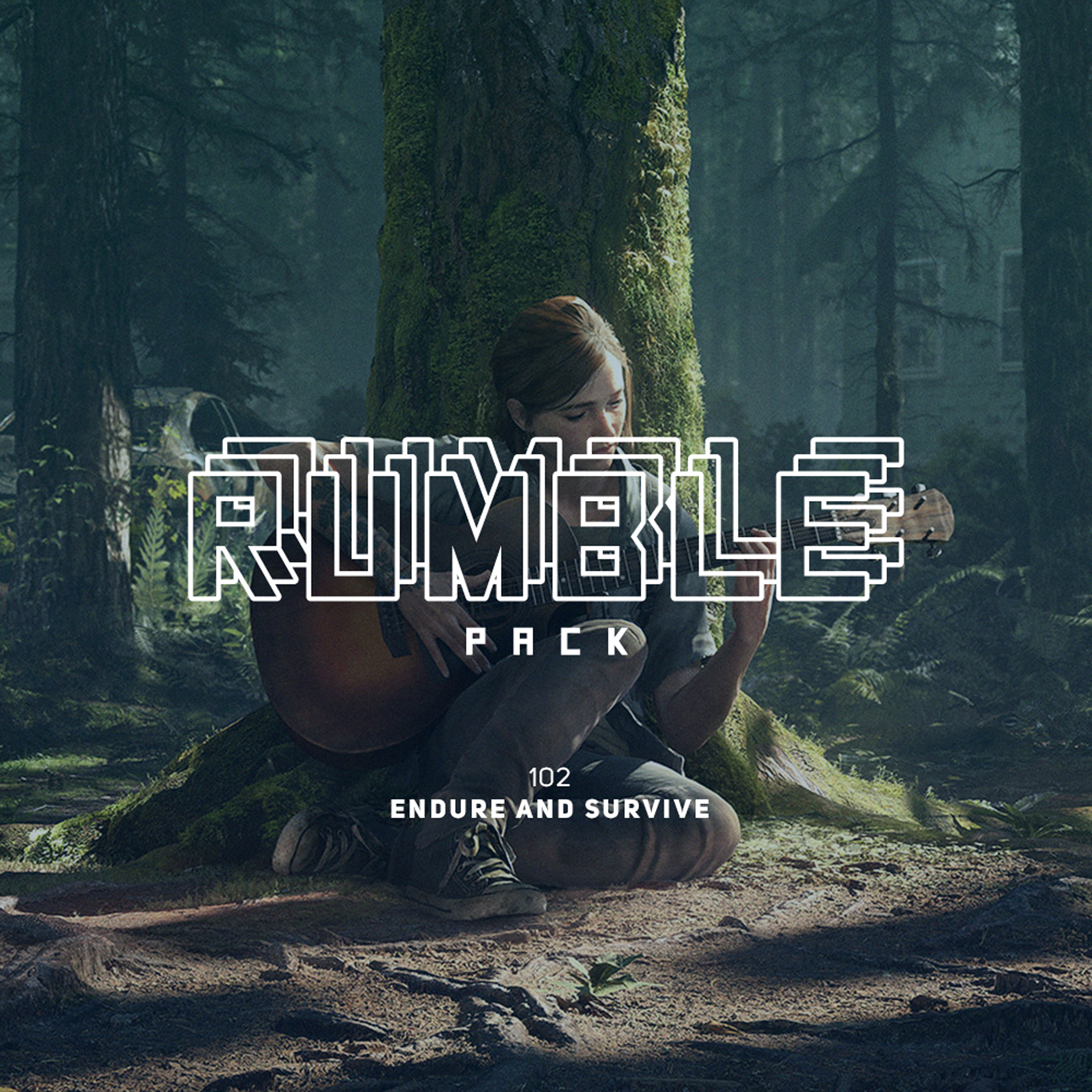 RUMBLE PACK